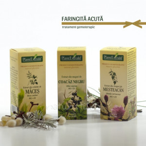Tratament naturist - Faringita acuta (pachet)