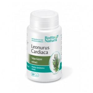 Leonurus Cardiaca - 30 cps