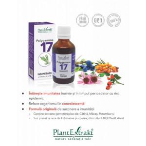 Polygemma nr. 17 - Imunitate