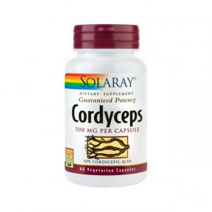 Cordyceps SE 500mg - 60 capsule vegetale