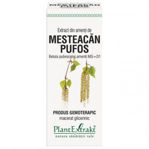 Extract din amenti de mesteacan pufos (BETULA PUBESCENS AMENTI MG=D1) 50ml