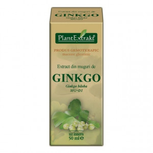 Extract din muguri de ginkgo (GINKGO BILOBA)