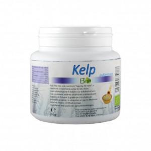 Kelp pulbere BIO - 250 g