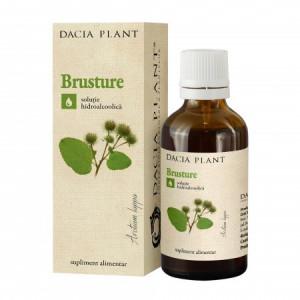 Tinctura Brusture - 50 ml