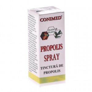 Tinctura propolis spray - 30 ml
