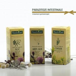 Tratament naturist - Parazitoze intestinale (pachet)