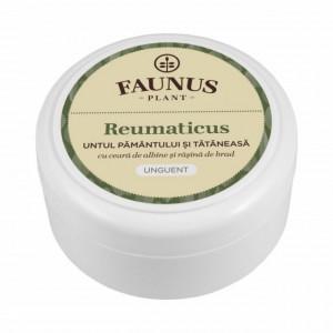 Unguent Reumaticus - 100 ml Faunus