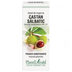 Extract din muguri de castan salbatic 50 ml (AESCULUS HIPP)