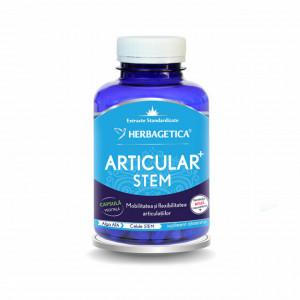 Articular STEM 120 cps