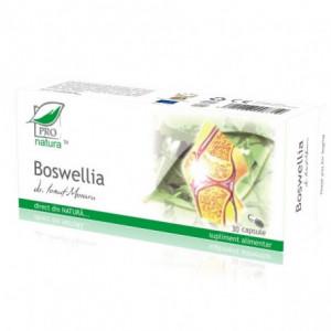 Boswellia - 30 cps