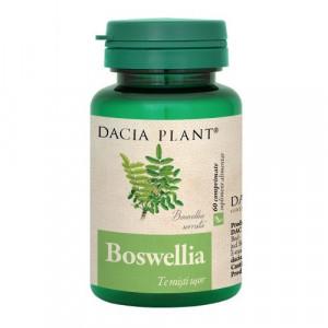 Boswellia - 60 cpr