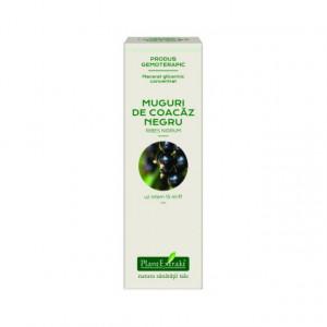 Extract concentrat din muguri de coacaz negru (RIBES NIGRUM)