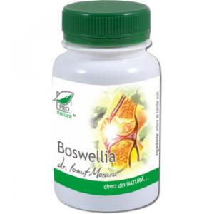 Boswellia - 60 cps