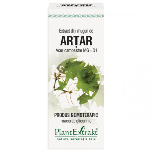 Extract din muguri de artar 50 ml (ACER CAMP)