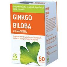Ginkgo Biloba 40 mg + Magneziu 150 mg - 60 cpr
