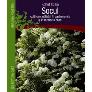 Socul: cultivare, utilizare in gastronomie si in farmacia casei
