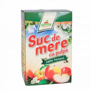 Suc natural de mere - 3L