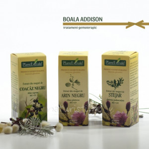 Tratament naturist - Boala Addison (pachet)