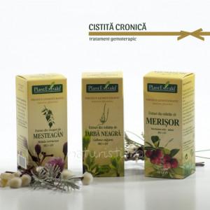 Tratament naturist - Cistita cronica (pachet)