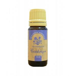 Ulei esential de Cimbrisor - 10 ml Herbavit