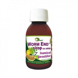 Worm End Sirop - 100 ml