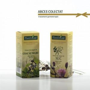 Tratament naturist - Abces - colectat (pachet)