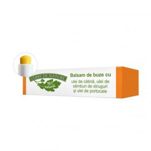 Balsam de buze cu ulei de catina, ulei din samburi de struguri si ulei de portocale 4.8 g