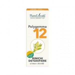 Polygemma nr. 12 - Rinichi Detoxifiere