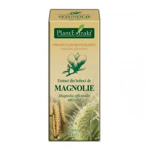 Extract din boboci de magnolia (MAGNOLIA OFF.)