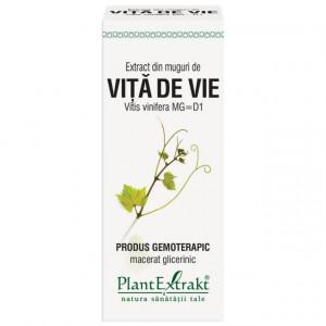 Extract din muguri de vita de vie (VITIS VINIF.)
