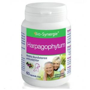 Harpagophytum - 60 cps