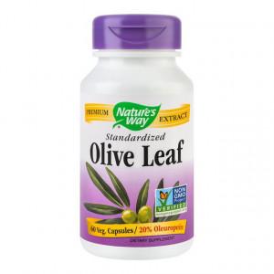 Olive Leaf (frunze de maslin) - 60 cps