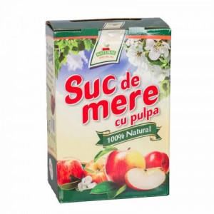 Suc natural de mere - 5L