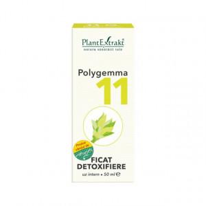 Polygemma nr. 11 - Ficat Detoxifiere