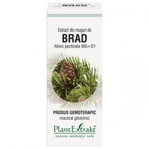 Extract din muguri de brad 50 ml (ABIES PECT)