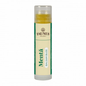Balsam Buze Menta - 5 ml