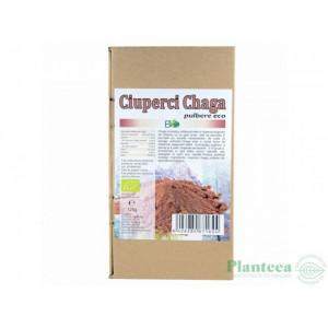 Ciuperci Chaga pudra BIO - 125 g