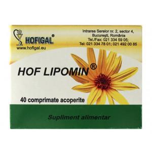 Hof Lipomin 40 cpr Hofigal