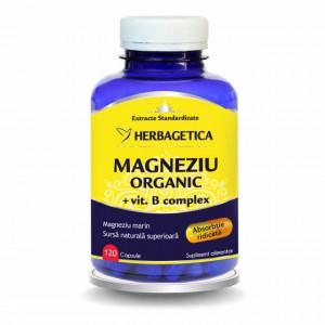 Magneziu Organic cu vitamina B complex - 120 cps