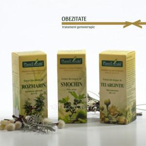 Tratament naturist 2 - Obezitate (pachet)