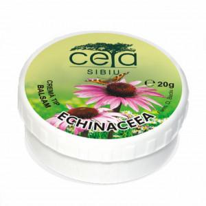 Unguent echinaceea - 20 g