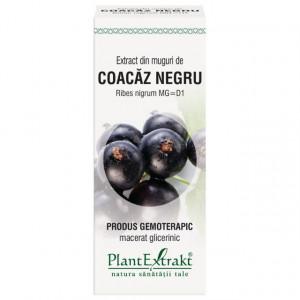Extract din muguri de coacaz negru (RIBES NIGRUM)