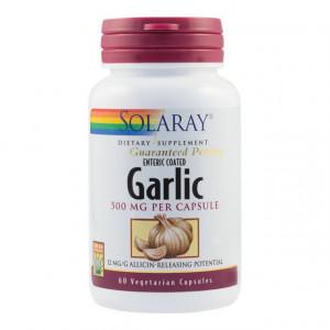 Garlic (Usturoi) 500mg - 60 cps