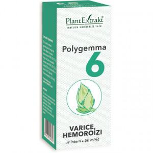 Polygemma nr. 6 - Varice, Hemoroizi