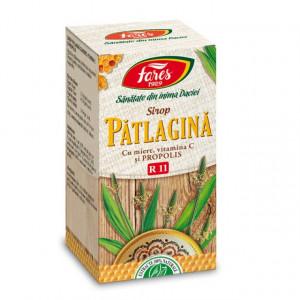 Sirop Patlagina cu miere si propolis R11 - 100 ml Fares