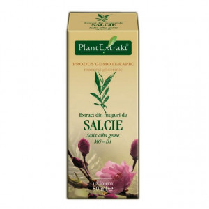 Extract din muguri de salcie (SALIX ALBA muguri)