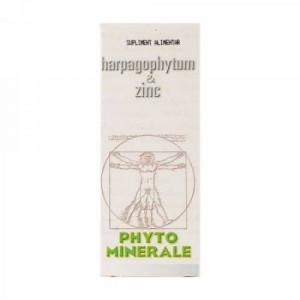 Harpagophytum si Zinc - 60 cps