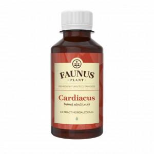 Tinctura Cardiacus - 200 ml