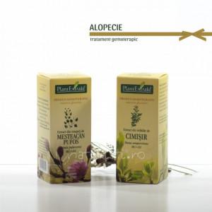 Tratament naturist - Alopecie (pachet)