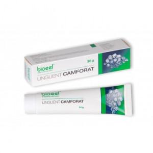 Unguent camforat - 30 g Bioeel